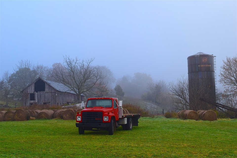 How to Keep Yourself Safe When Choosing a Rural Property or Homestead?
